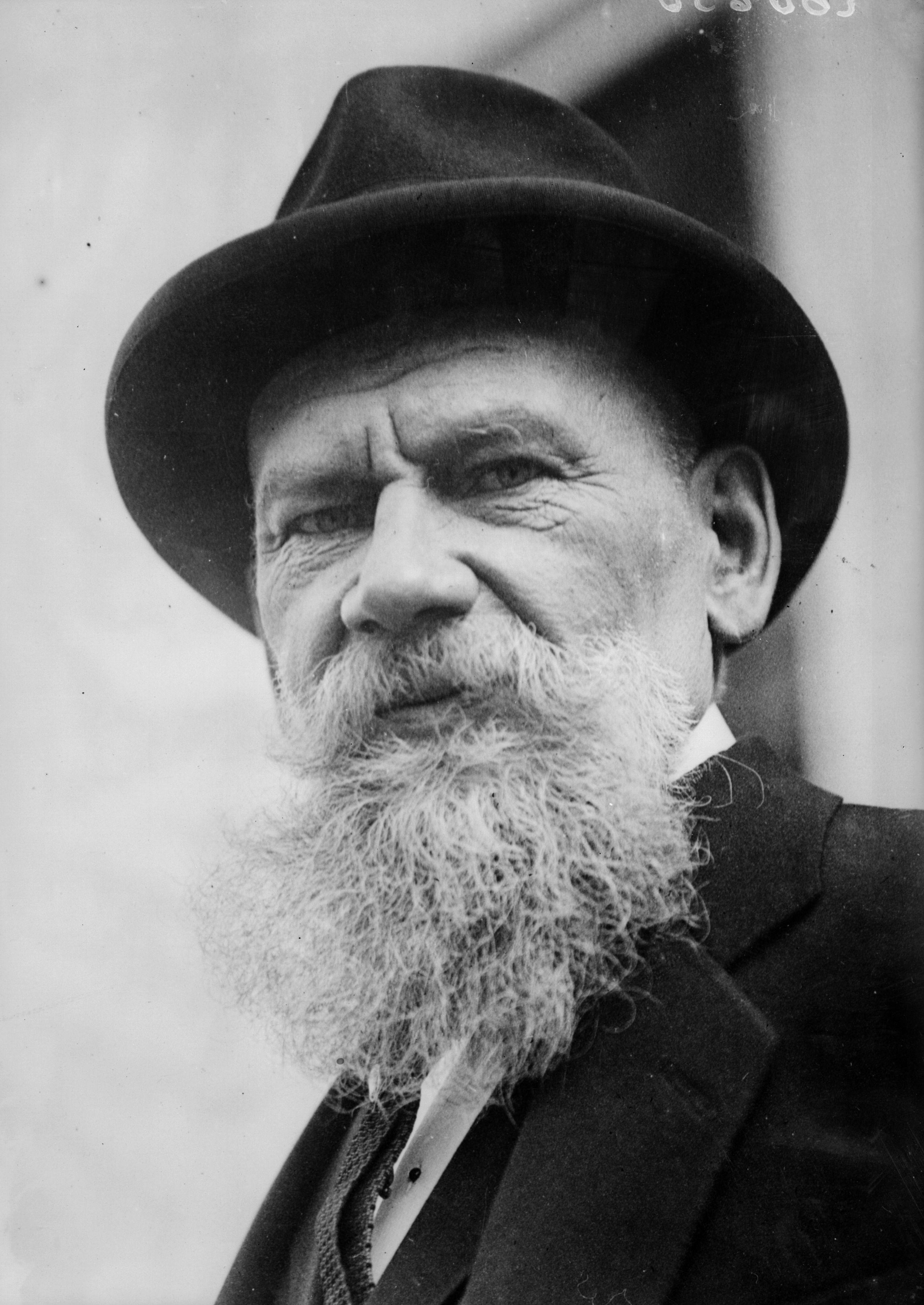 Count Tolstoy