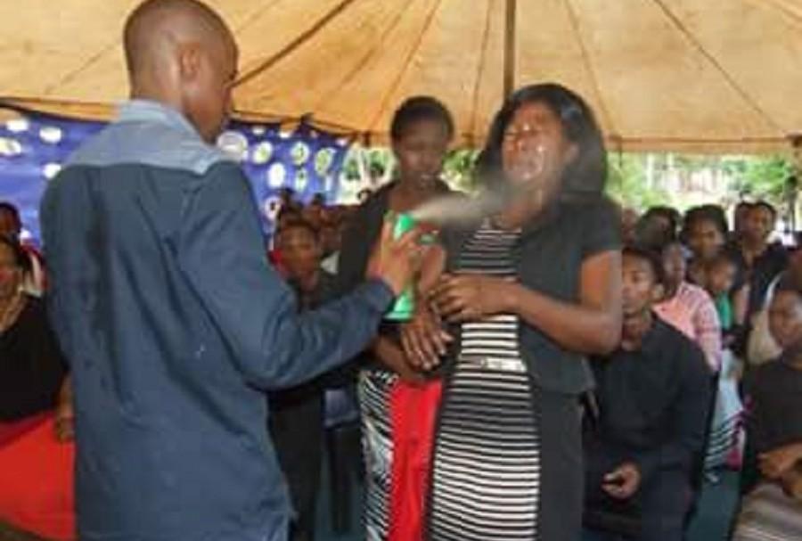Pastor rocía insecticida