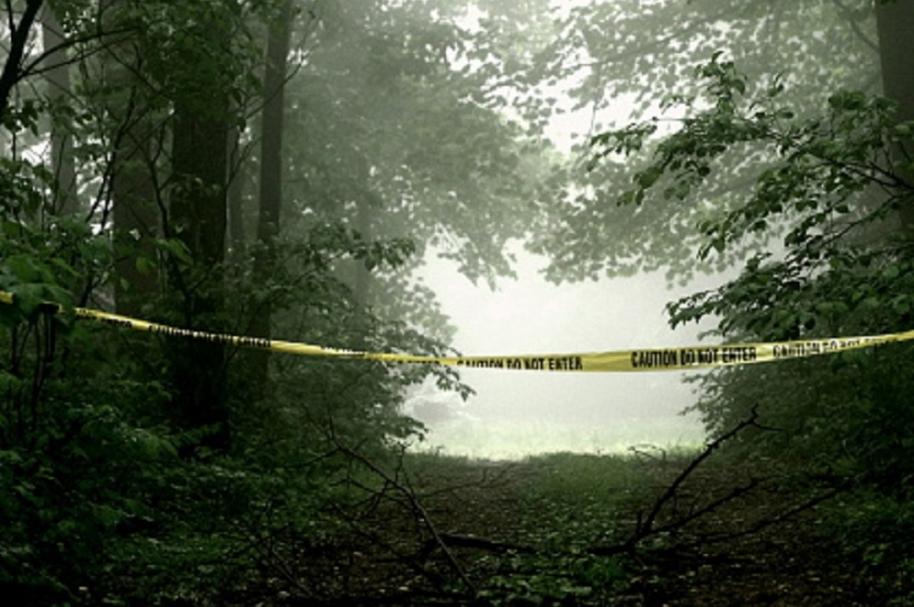 Altos índices de criminalidad en Latinoamerica