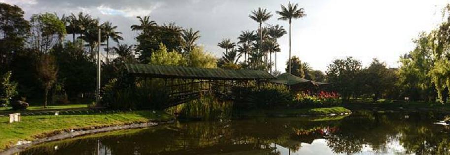 Día de las velitas Jardín Botánico
