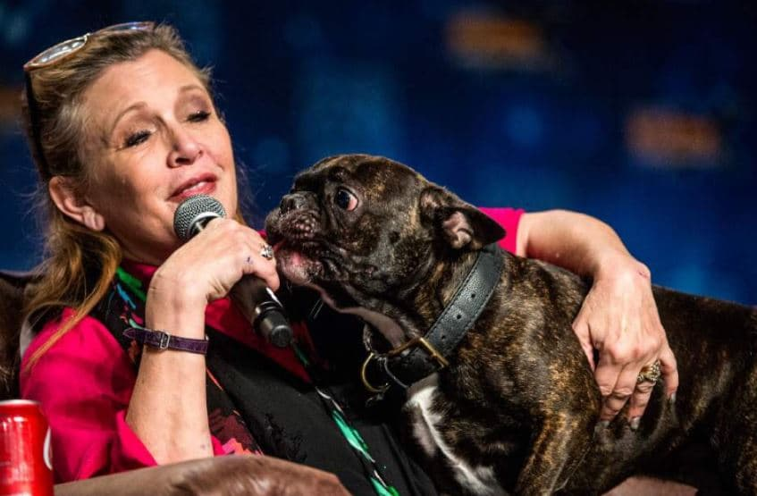 Carrie Fisher y Gary, su perro
