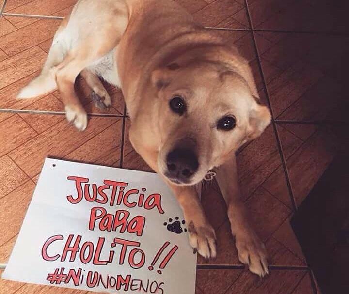 Justicia para Cholito