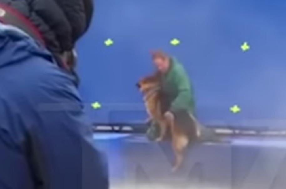Maltrato animal en grabación de película