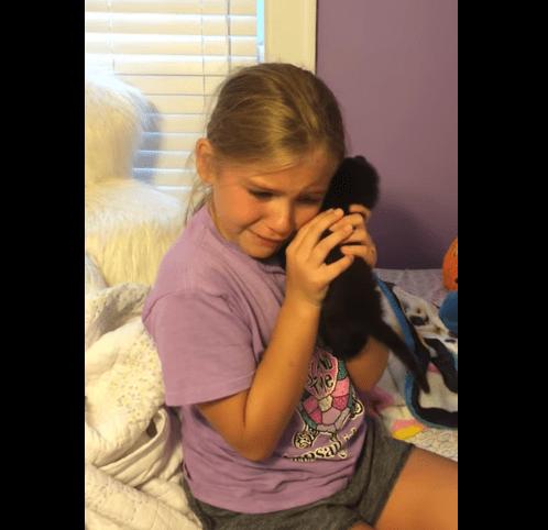 Marley y su nuevo gatico