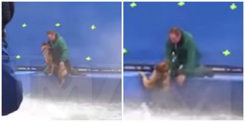 Maltrato animal en grabación de película 'El propósito de un perro'
