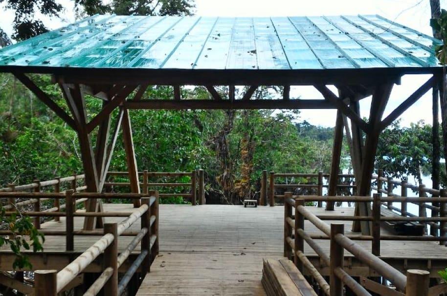 Sendero ecoturístico del Medio Atrato - Pulzo.com