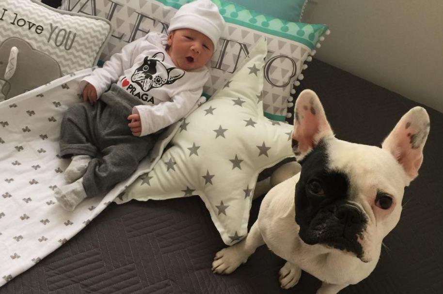 Valentino y Praga, el hijo y la mascota de la presentadora de Noticias RCN Carolina Soto.