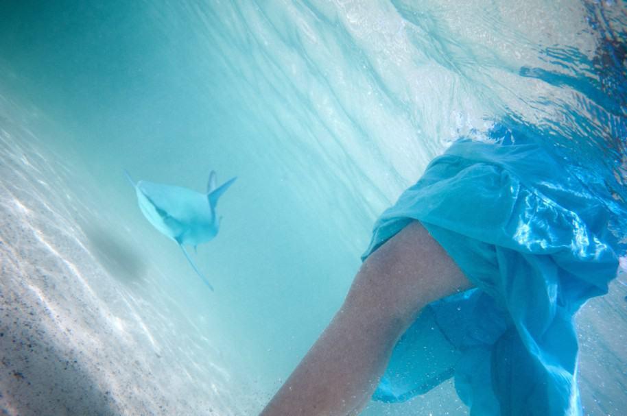 Tiburón nada hacia una mujer. Pulzo.com