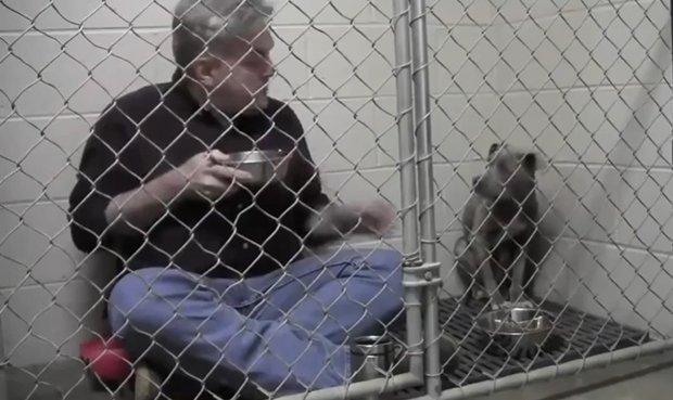 Veterinario se encierra con perro maltratado. Pulzo.com.