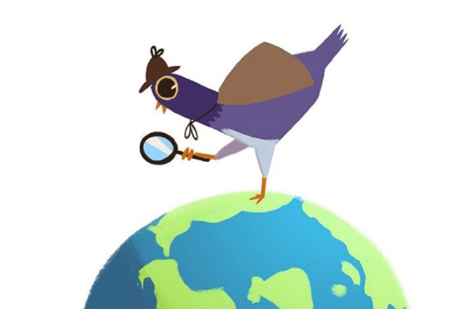 Trash Doves. Pulzo.com.