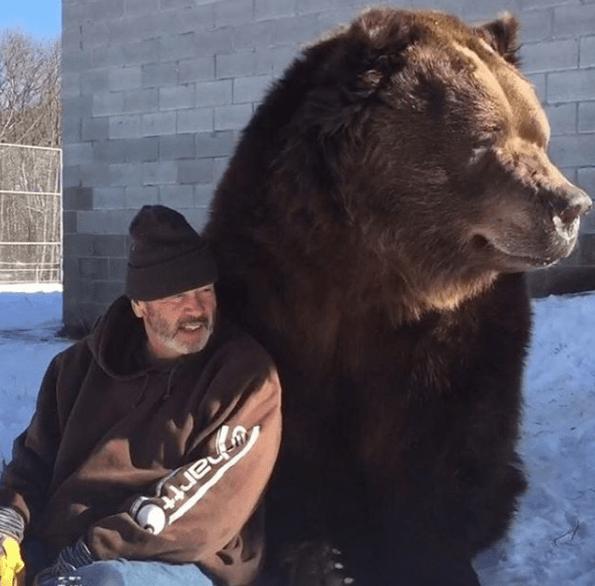 Hombre y su amigo oso. Pulzo.com
