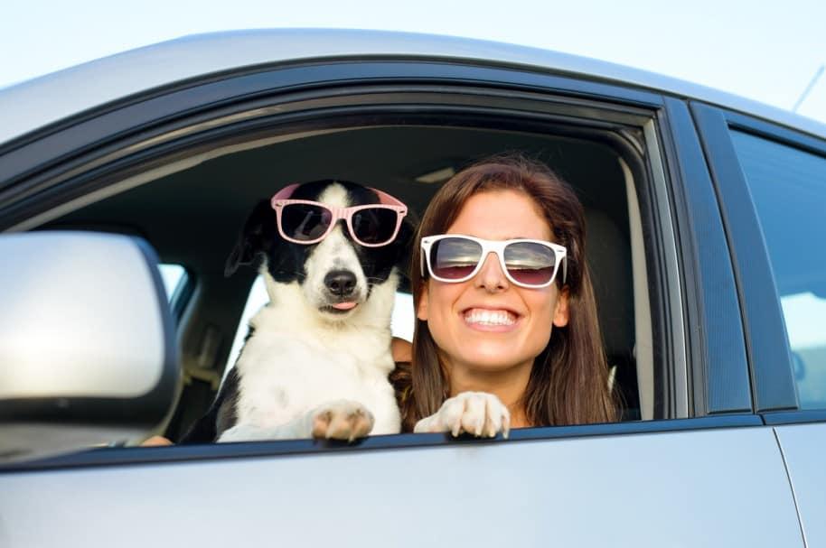 Perro y su dueña en un carro. Pulzo.com