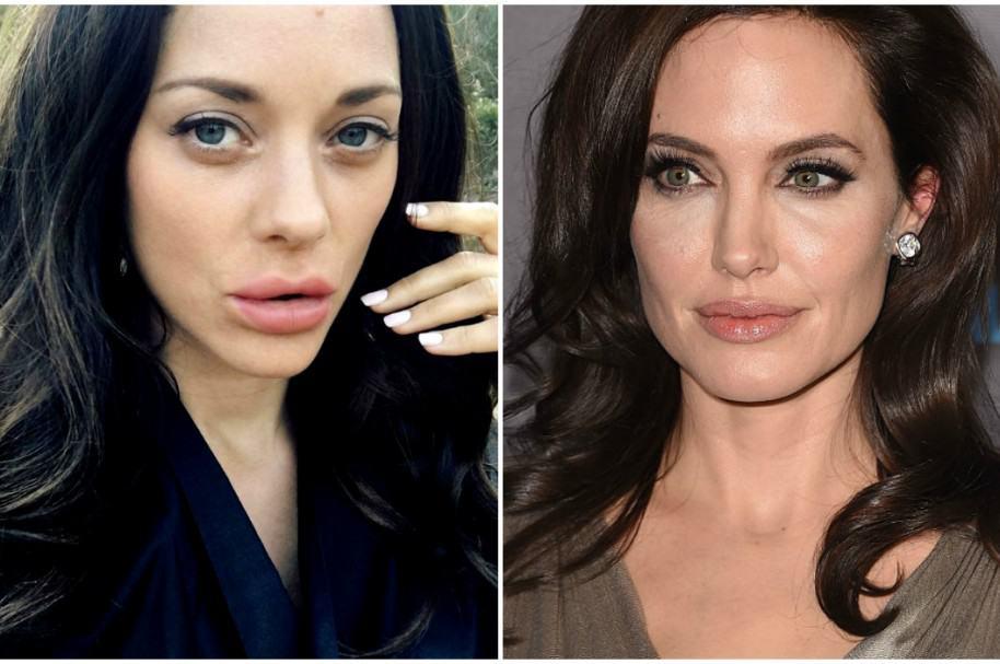 Marion Cotillard / Angelina Jolie