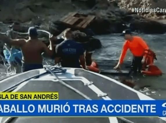 Fallido rescate de caballo en mar de San Andrés. Pulzo.com