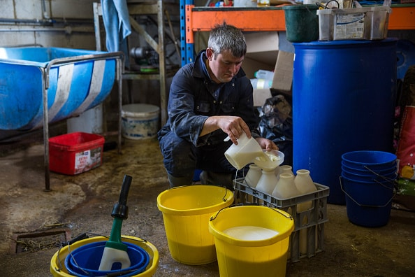 Producción de leche