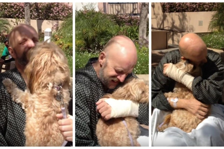 Actor Jim Tavaré y su perro, 'Mr Kippy'.
