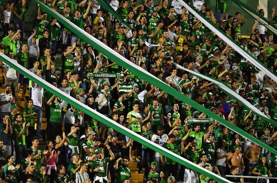 Fanáticos del Chapecoense - Pulzo.com