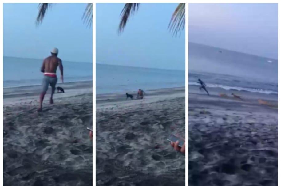 Luego de que un joven, al parecer, intentara patear a un perro, fue perseguido por él y otros canes en una playa.