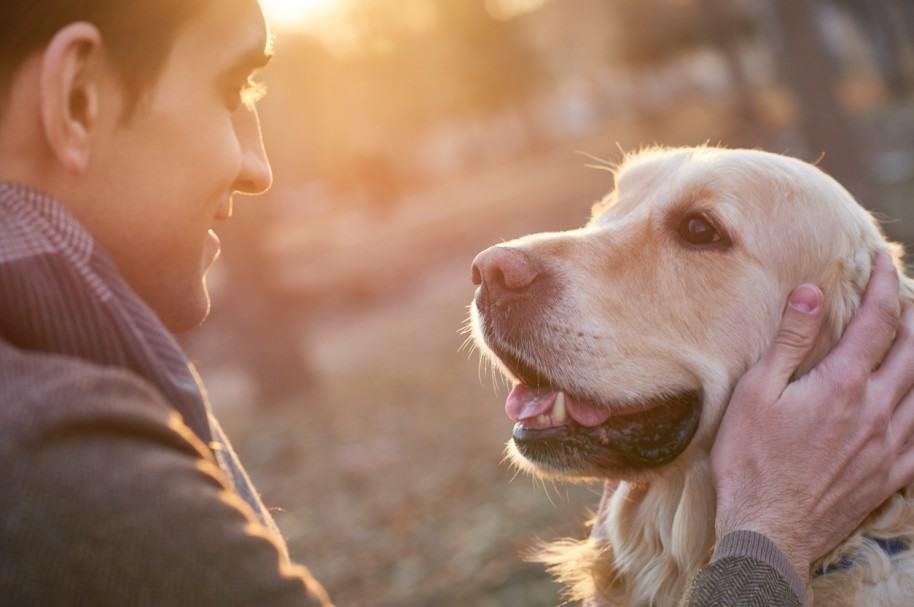 Hombre y su perro. Pulzo.com