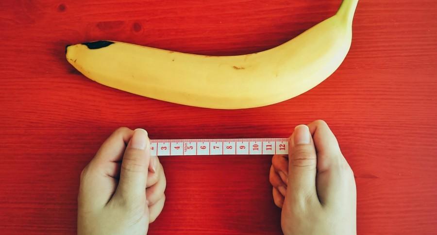 Cuál es el tamaño normal del pene