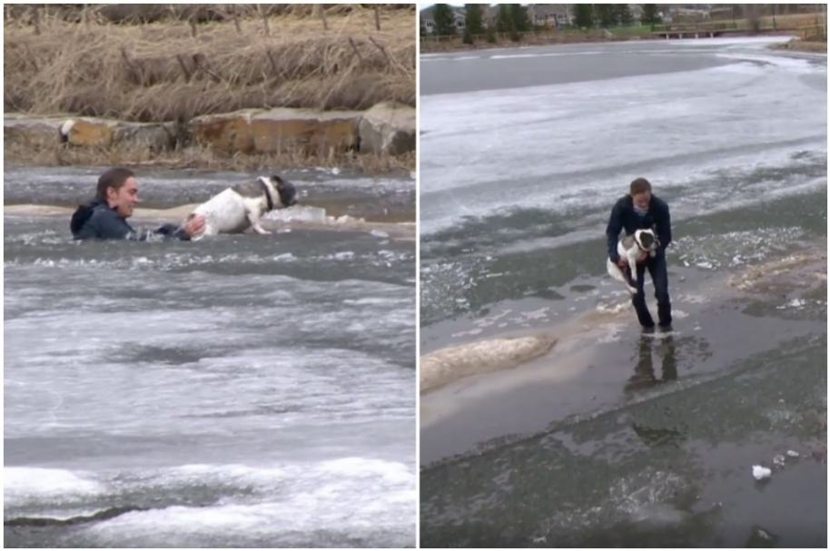 Joven salva a perrito en lago congelado, en Canadá.