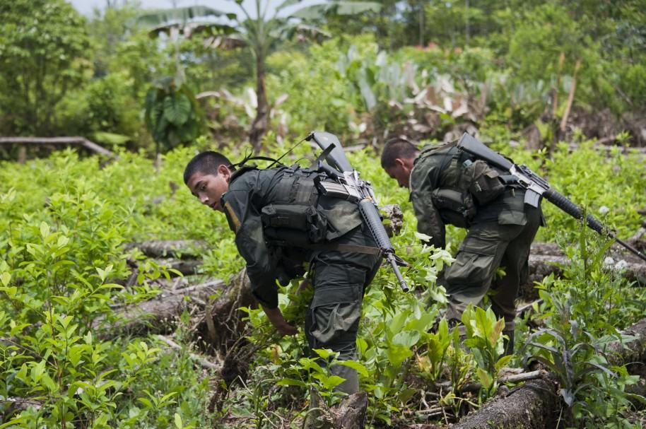 Erradicadores de coca en Nariño