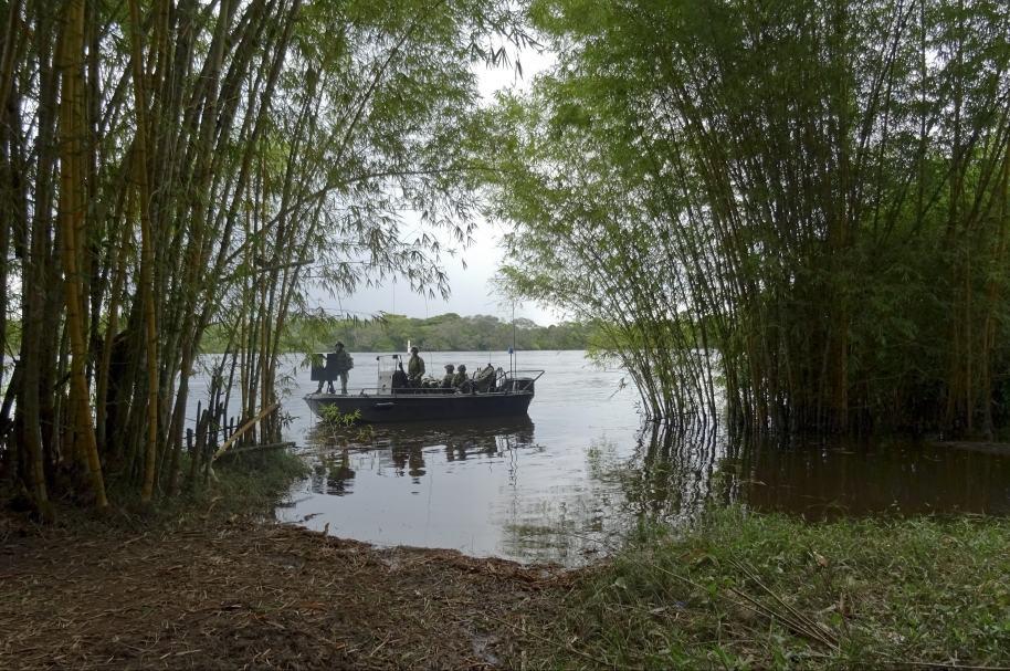 Selvas del Guaviare