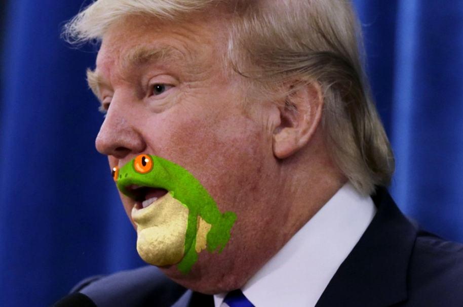Trump con cara de sapo