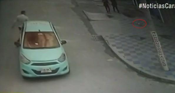 Taxista y un cómplice roban perro en Bogotá. Pulzo.com