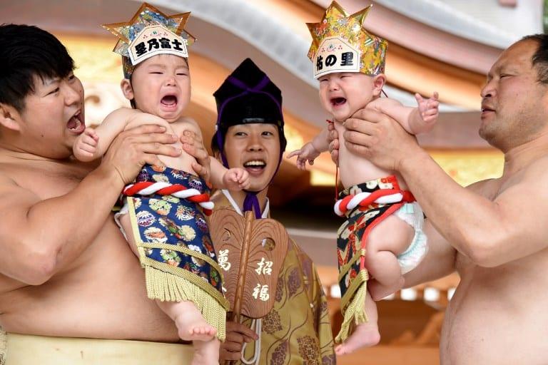 Luchadores de sumo con bebés. Pulzo.com