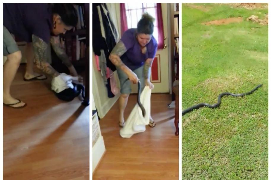 Mujer atrapa con funda de almohada una serpiente. Pulzo.com