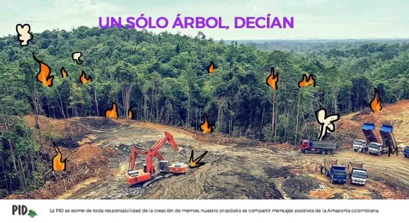 Meme sobre la deforestación