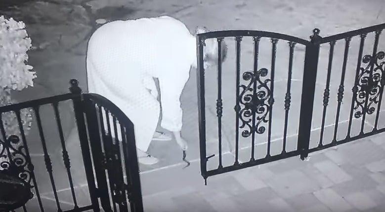 Mujer coge serpiente cascabel. Pulzo.com