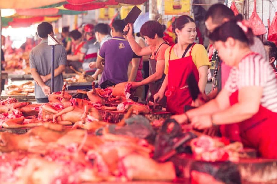 Festival de carne de perro