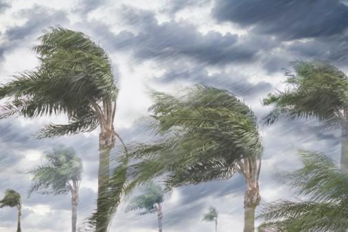 Tormenta tropical Cindy toca tierra