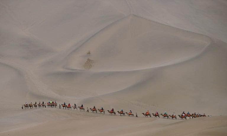 Personas montan camellos en desierto de China. Pulzo.com