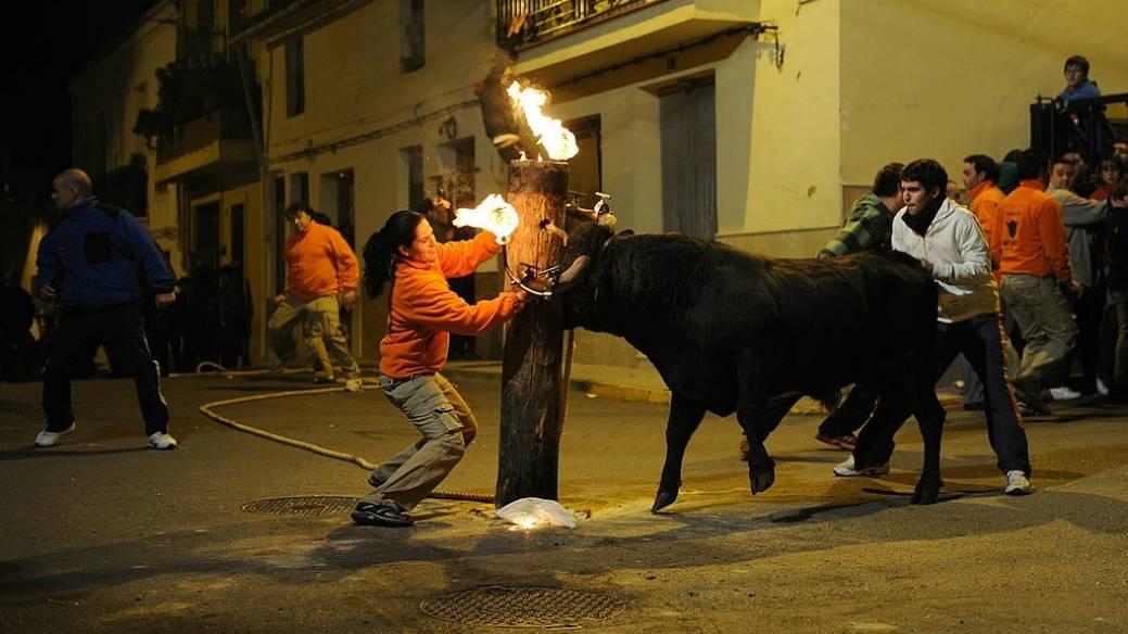 Toro con fuego en los cuernos durante festejo taurino español. Pulzo.com