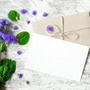 Cartas a Violeta