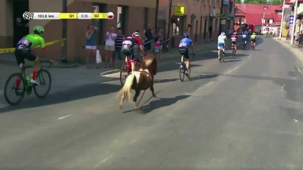 Pony en Vuelta a Polonia. Pulzo.