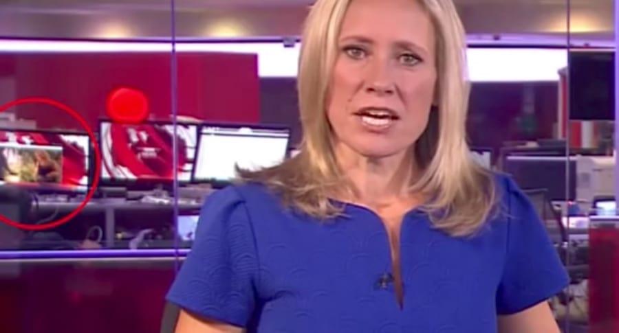Escena de 'striptease' en noticiero de BBC en vivo.