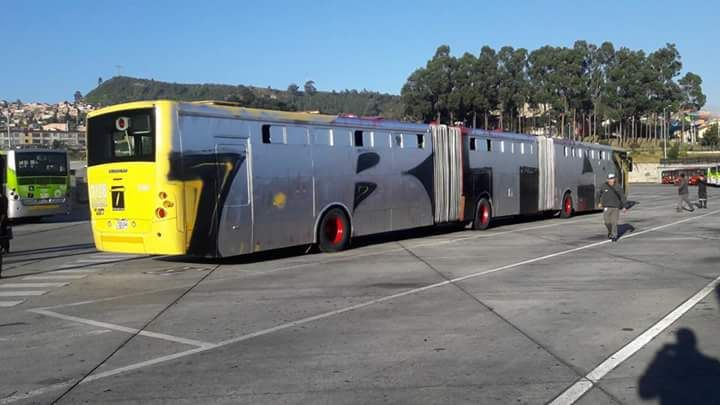 Grafiti en bus biarticulado de Transmilenio