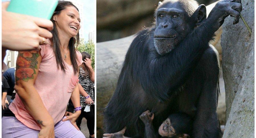 Mujer haciendo 'twerking' y chimpancés. Pulzo.