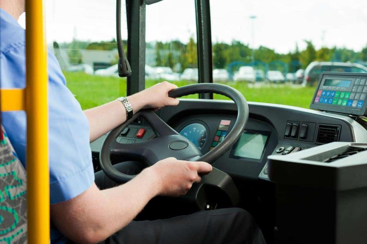 Conductor de bus. Pulzo.