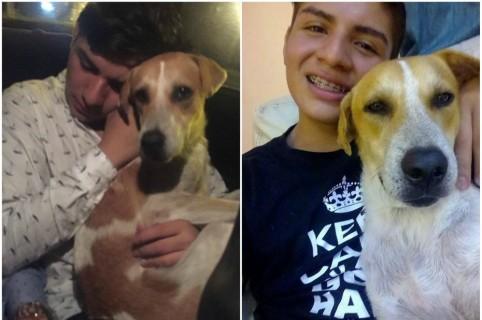 Joven con perro.