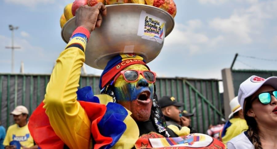 Hincha de Selección Colombia