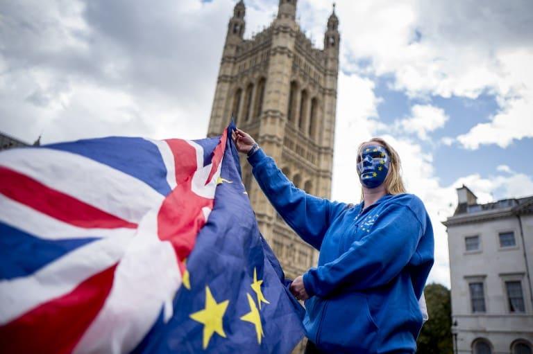 Protestante del Brexit. Pulzo.