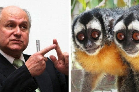 Manuel Elkin Patarroyo y dos monos nocturnos.