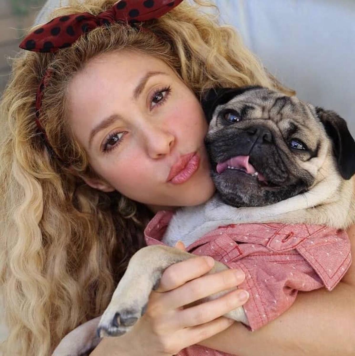 Shakira y Doug The Pug