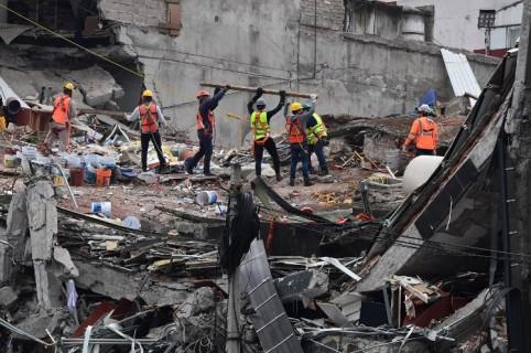 Edificio destruido por terremoto de México, Pulzo.