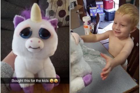 Unicornio de peluche que asustó a un niño. Pulzo.